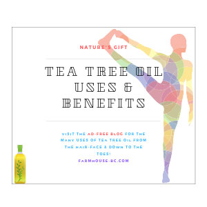 Tea Tree Oil Uses and Benefits - Farmhouse Basic Collection
